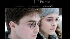 Web Oficial de 'Harry Potter and the Half-Blood Prince' Actualizada