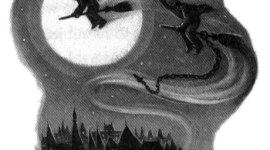 Serie de Harry Potter 123/199: 'Orientación Vocacional'