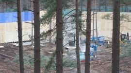 Nuevas Imágenes del Set de Filmación de 'Las Reliquias' en el Bosque Swinley