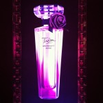 Videoclip: Emma Watson Presenta su Nueva Fragancia 'Lancôme Trésor Midnight Rose'