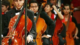 México: Próximo Recital de 'Harry Potter' con la Orquesta Juvenil Universitaria!