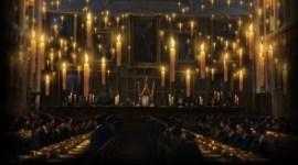 Pottermore: Versión Beta Extendida más Tiempo y Próximas Mejoras Técnicas