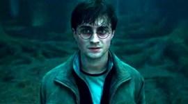 Anunciado Reconocimiento Especial para la Saga de 'Harry Potter' en los 'American Film Institute Awards'