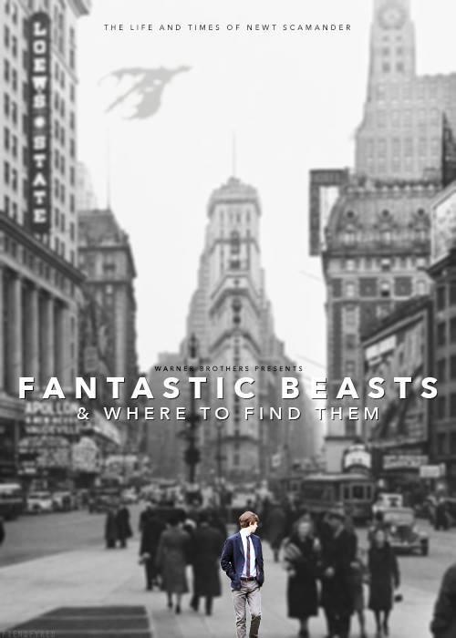 Harry Potter BlogHogwarts Animales Fantasticos y donde Encontrarlos Fanart 04