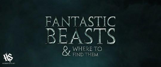 Harry Potter BlogHogwarts Animales Fantasticos y donde Encontrarlos Fanart 11