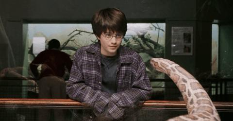 Harry Potter BlogHogwarts Cosas Muggle (1)