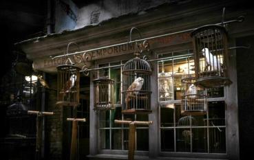 PETA Acusa al Tour de Harry Potter en Londres de Maltrato a las Lechuzas