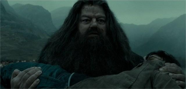 Harry Potter BlogHogwarts Rubeus Hagrid
