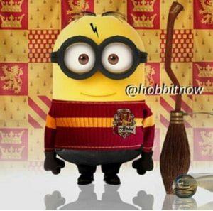 minion quidditch