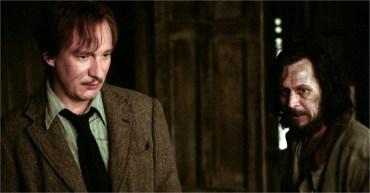 Cinco teorías de fans de Harry Potter tan absurdas que rozan lo verosímil