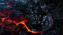 Newt Scamander tendrá un Niffler como mascota en 'Animales Fantásticos'; más criaturas reveladas!