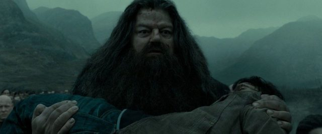 Harry-Potter-BlogHogwarts-Rubeus-Hagrid-1024x426
