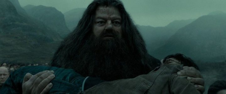 Harry-Potter-BlogHogwarts-Rubeus-Hagrid-1024x426