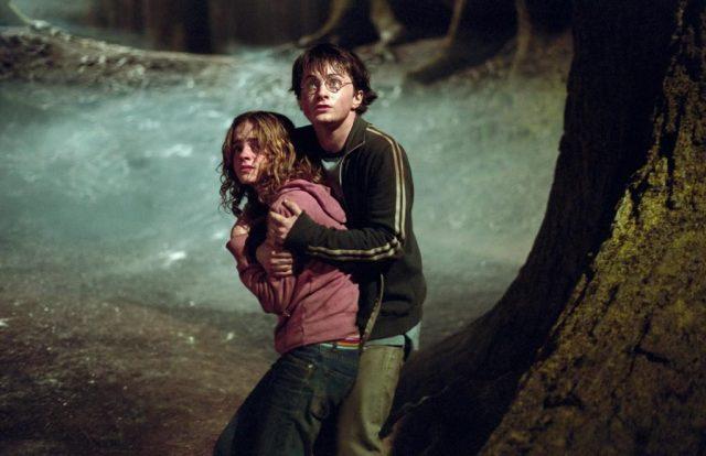 harry hermione bosque
