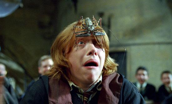 Harry Potter BlogHogwarts Araña Caliz Fuego