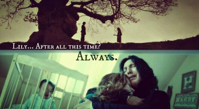 lily-snape-always
