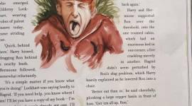 'Harry Potter y la Cámara Secreta' Ilustrado: Capítulo 7