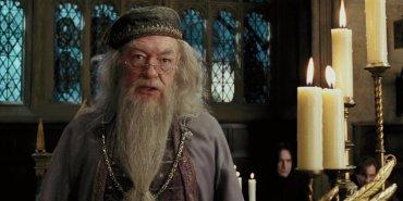 Confirmado: Albus Dumbledore aparecerá en la segunda entrega de Animales Fantásticos