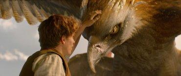 Aparecen las primeras críticas y reseñas de 'Animales Fantásticos y dónde Encontrarlos'
