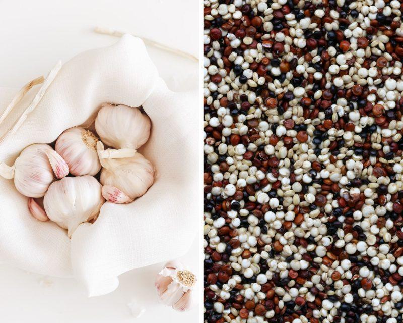 bulbs of garlic and tri color quinoa food pairing