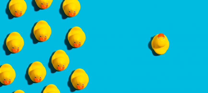 yellow rubber ducks on a blue background odd one out