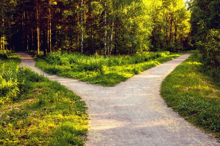 fork in road making big decisions life path