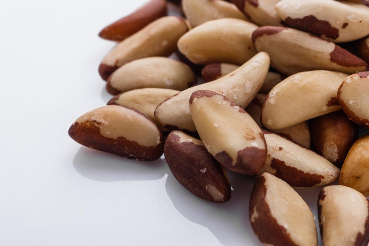 brazil nut on a white acrylic background
