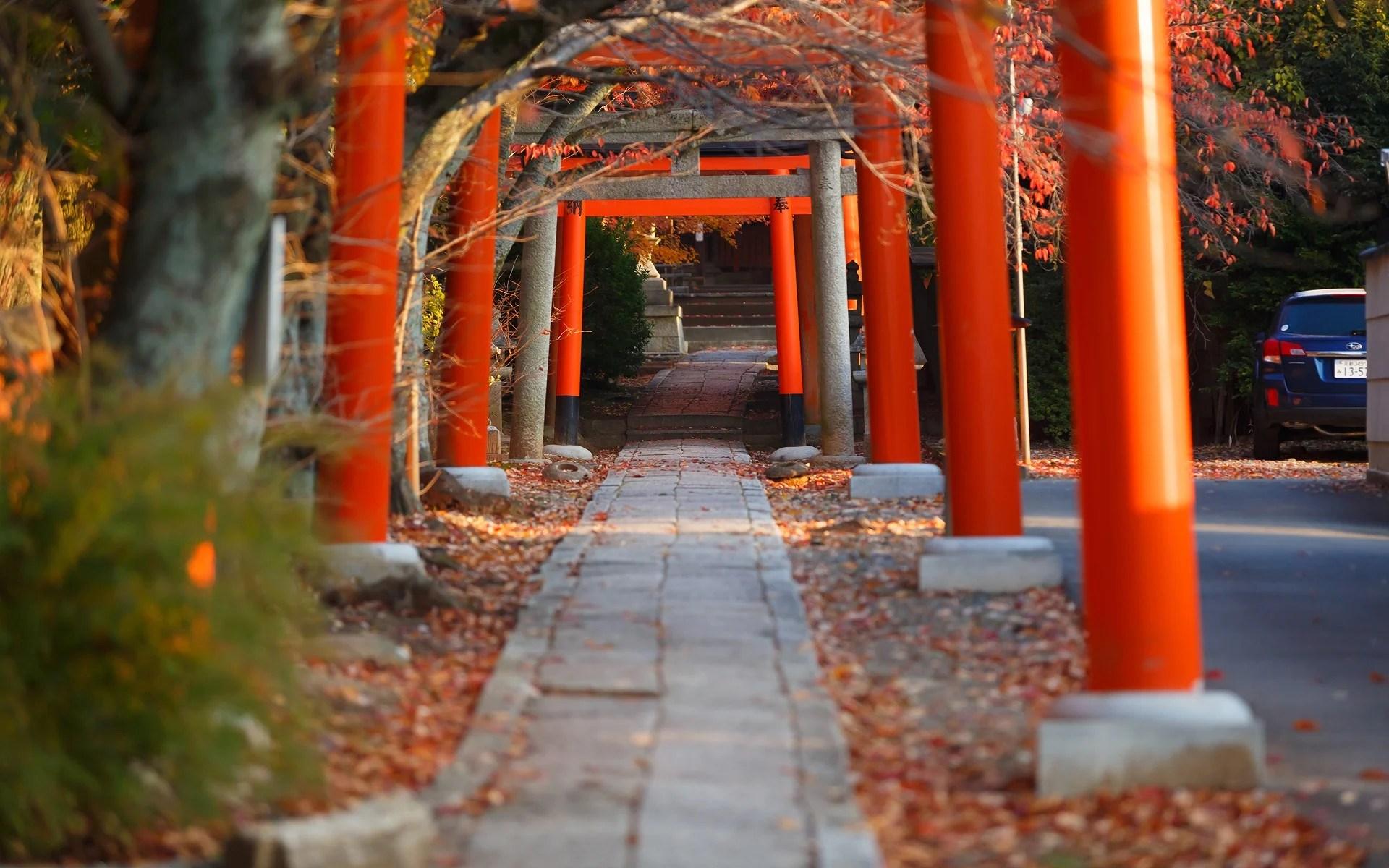 2013年紅葉の京都・竹中稲荷神社の壁紙(計35枚) - 壁紙&日々駄文