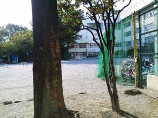 墨田區立中和公園。菊川公園。(震災復興52小公園。その5。) - おやじのつぶやき