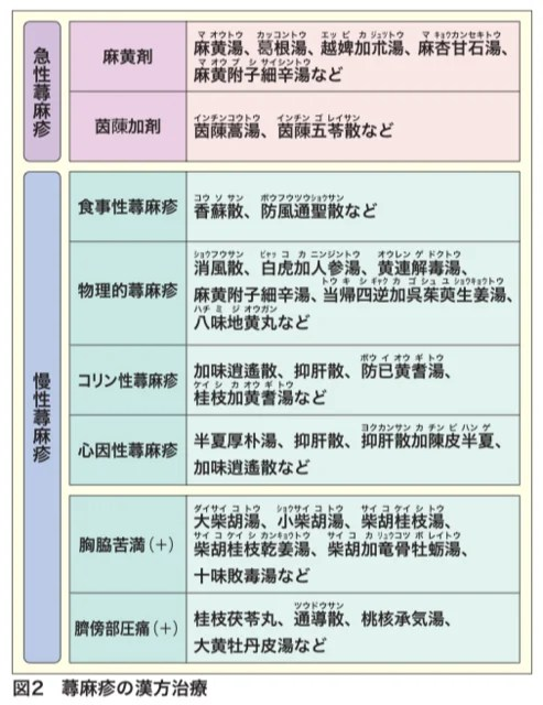 蕁麻疹に使う漢方を整理してみました。 - 漢方學習ノート