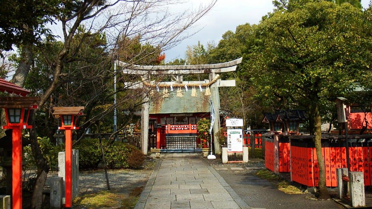 河津桜もうすぐ咲きそう 車折神社 - 京都で定年後生活