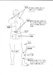 ツボの全體図 - 夫婦で歩んだ太極拳20年