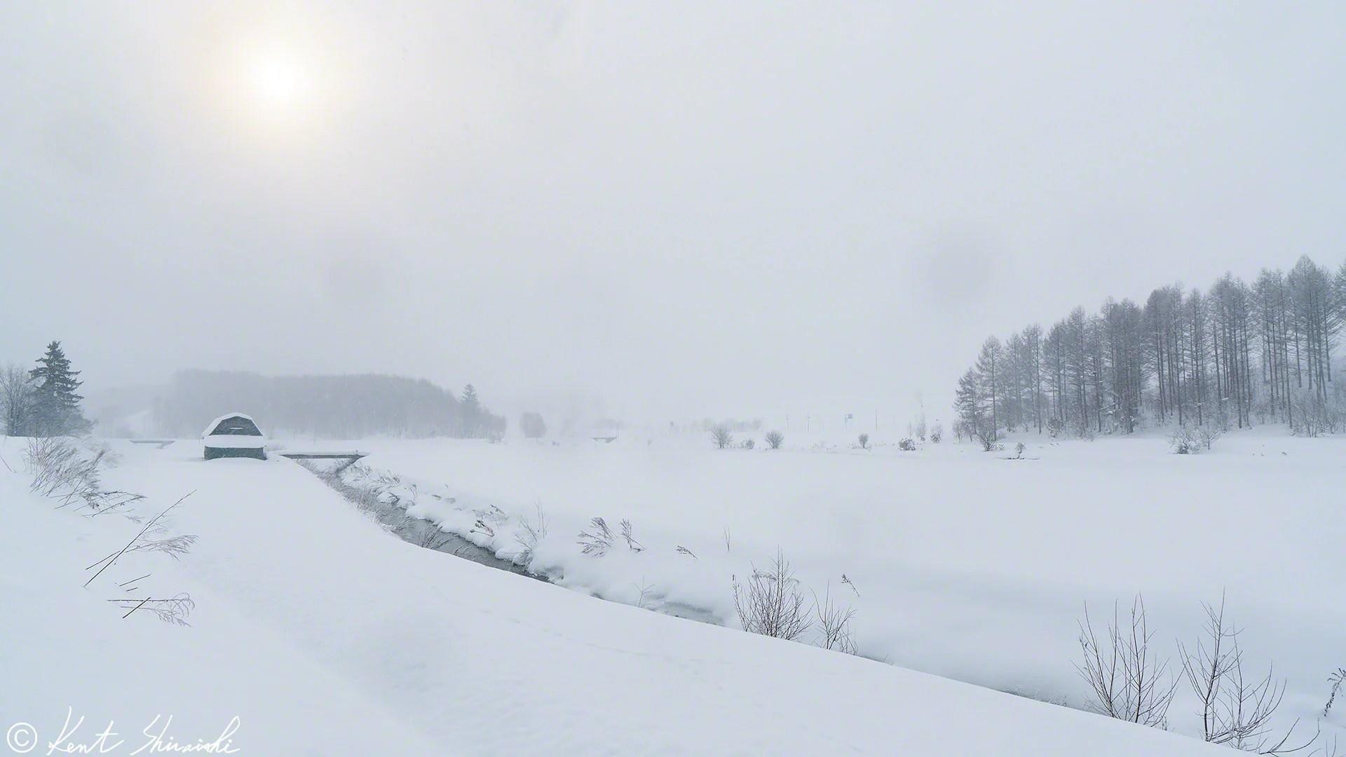 雪降る日も楽しいですよ! - Kent Shiraishi Photo Blog
