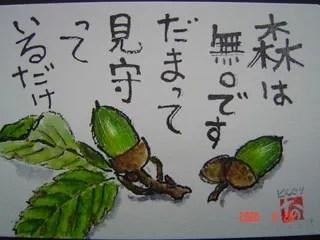 絵手紙 どんぐり - なおの絵手紙 那須からお便り