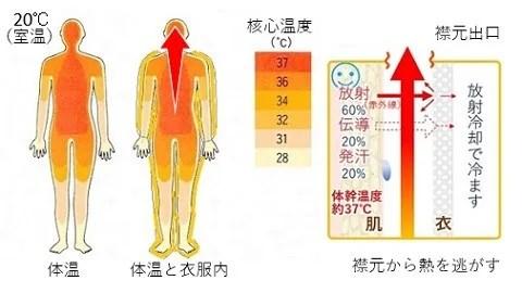 体幹温度と襟元から熱を逃がす「背中クールタイ」の気流の流れ