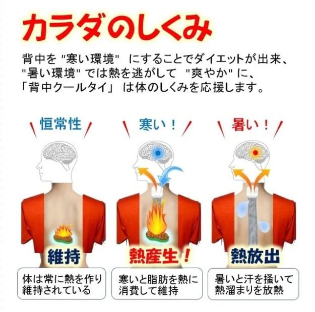 機能性インナー寒い環境褐色脂肪細胞を冷やしてダイエット。暑い環境でクールにします。
