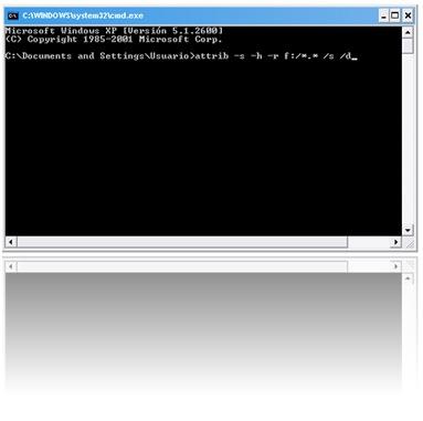 Ver carpetas y archivos ocultos por virus en memorias USB