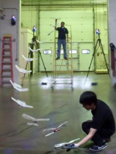 Ave robótica aterrizando