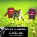 Does Kitten Guilt Really Work?