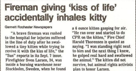 "Fireman giving 'kiss of life' accidentally inhales kitty, Gannett Rochester Newspapers.  ""A brave fireman was rushed to the hospital for injuries suffered in the line of duty after he swallowed a tiny kitten while trying to revive it with the kiss of life,"" the ""Sun"" reports in its Sept. 7 issue.  Firefighter Steve Larsen, 34, was inside a burning warehouse near Stockhold, Sweden, when he found a 6 ounce kitten gasping for air. ""He ran over and started to do CPR on the kitten,"" Fire Chielf Harald Thorenson is quoted as saying. ""I was standing right next to him and the next thing I knew, he gulped real hard and swallowed the animal."" The kitten did not survive, but animal rights activists plan to honor Larsen."