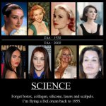 Plastic Surgery: It's All the Rage