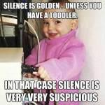 Suspicious Silence