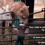 What Do You Do During a Camel Attack?