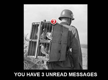 "German Soldier with Carrier Pigeons: ""You have 3 unread messages."""