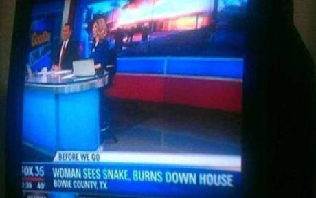 Bowie County, TX: Woman Sees Snake, Burns Down House