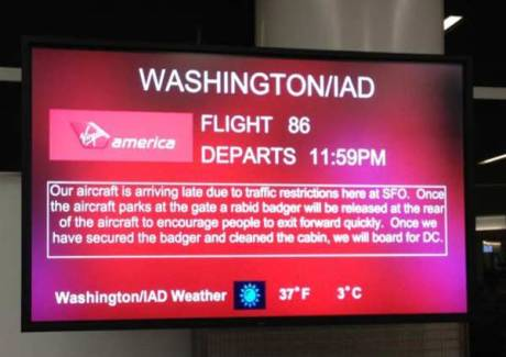 Washington-IAD Flight 86 Departs 11:59PM.  Our aircraft is arriving late due to traffic restrictions here at SFO. Once the aircraft parks at the gate a rabid badger will be released at the rear of the aircraft to encourage people to exit forward quickly. Once we have secured the badger and cleaned the cabin, we will board for DC.