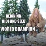 Reigning Hide & Seek World Champion Revealed