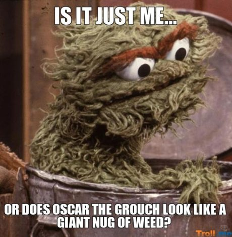 Is it just me, or does Oscar the Grouch look like a giant nug of weed?