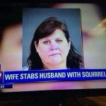 Stabbed With a Squirrel?