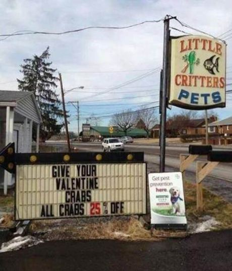 "Little Critters Pet Store Sign: ""Give Your Valentine Crabs!  All Crabs 25% Off!"""